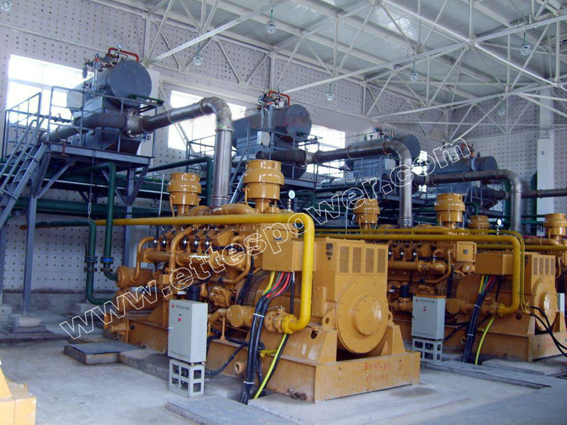 Ettes Power CHP Gas Generator