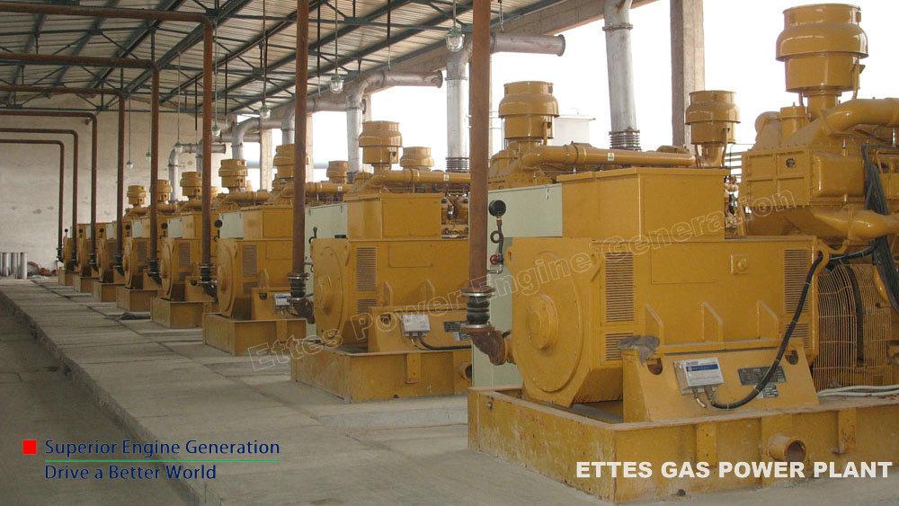 Biogas generator,Methane gas generator,Landfill Gas